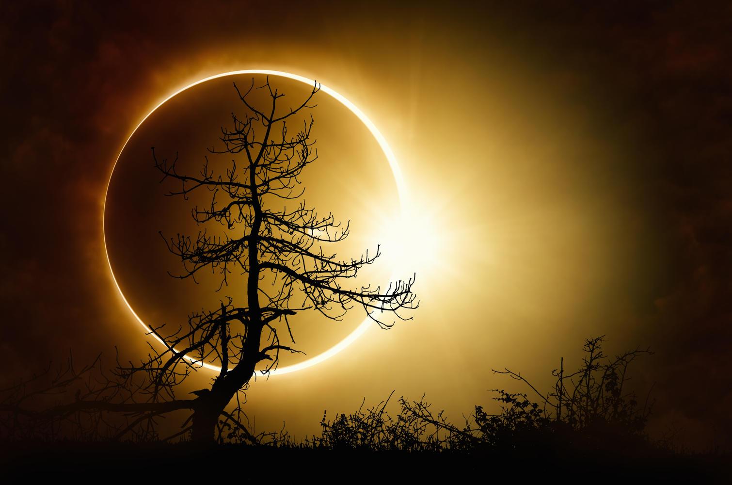 Une éclipse solaire ce dimanche 21 juin en Afrique — Espace