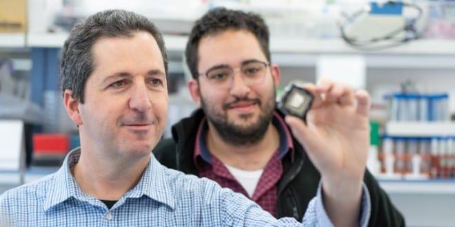 Les puces bioniques israéliennes éviteront de sacrifier les animaux dans  les laboratoires - © Infos-Israel.News - Sté Alyaexpress-News